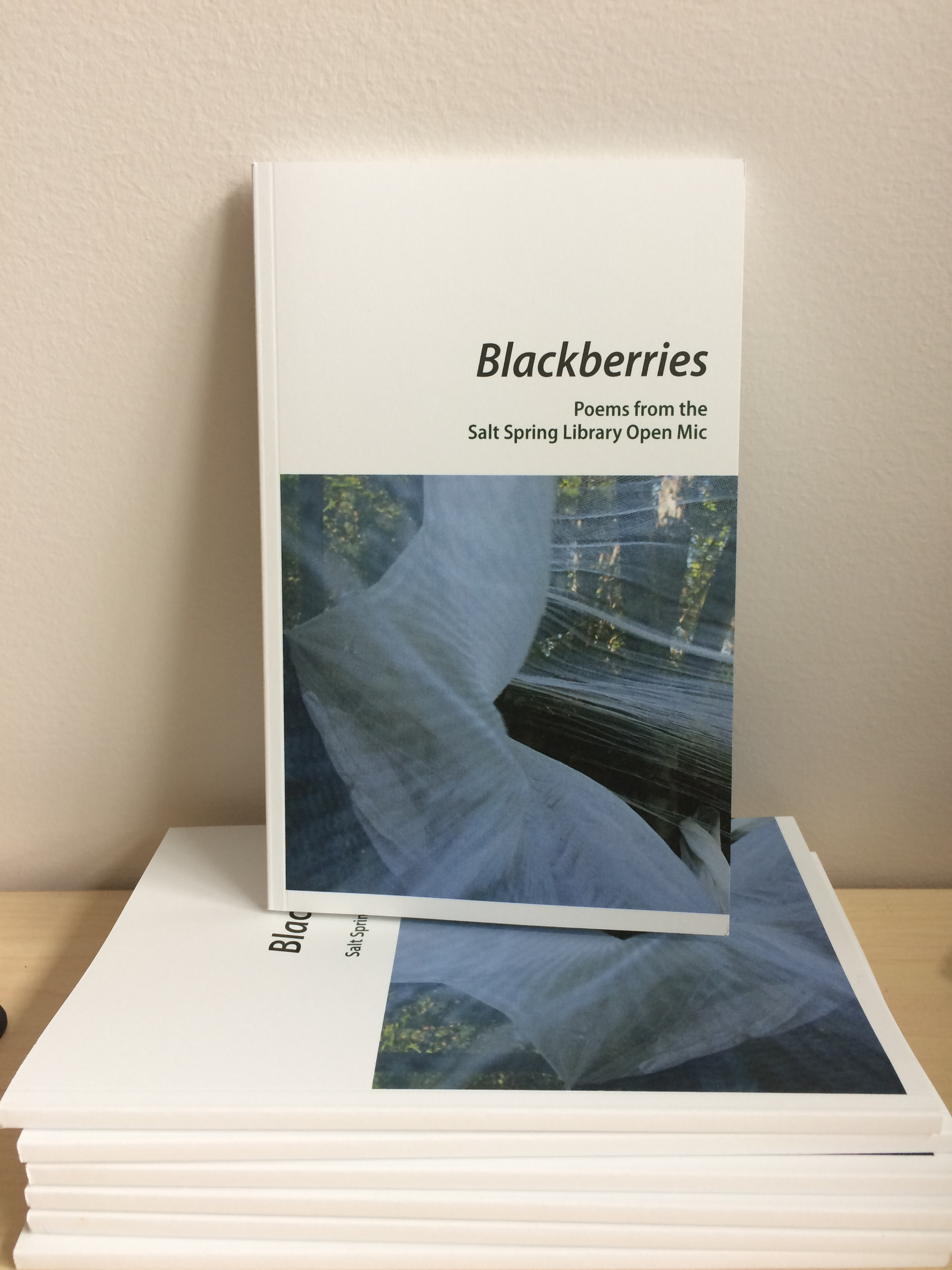 BlackberriesChapbook