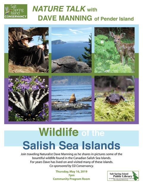 Wildlife of The Salish Sea Islands @ Community Program Room